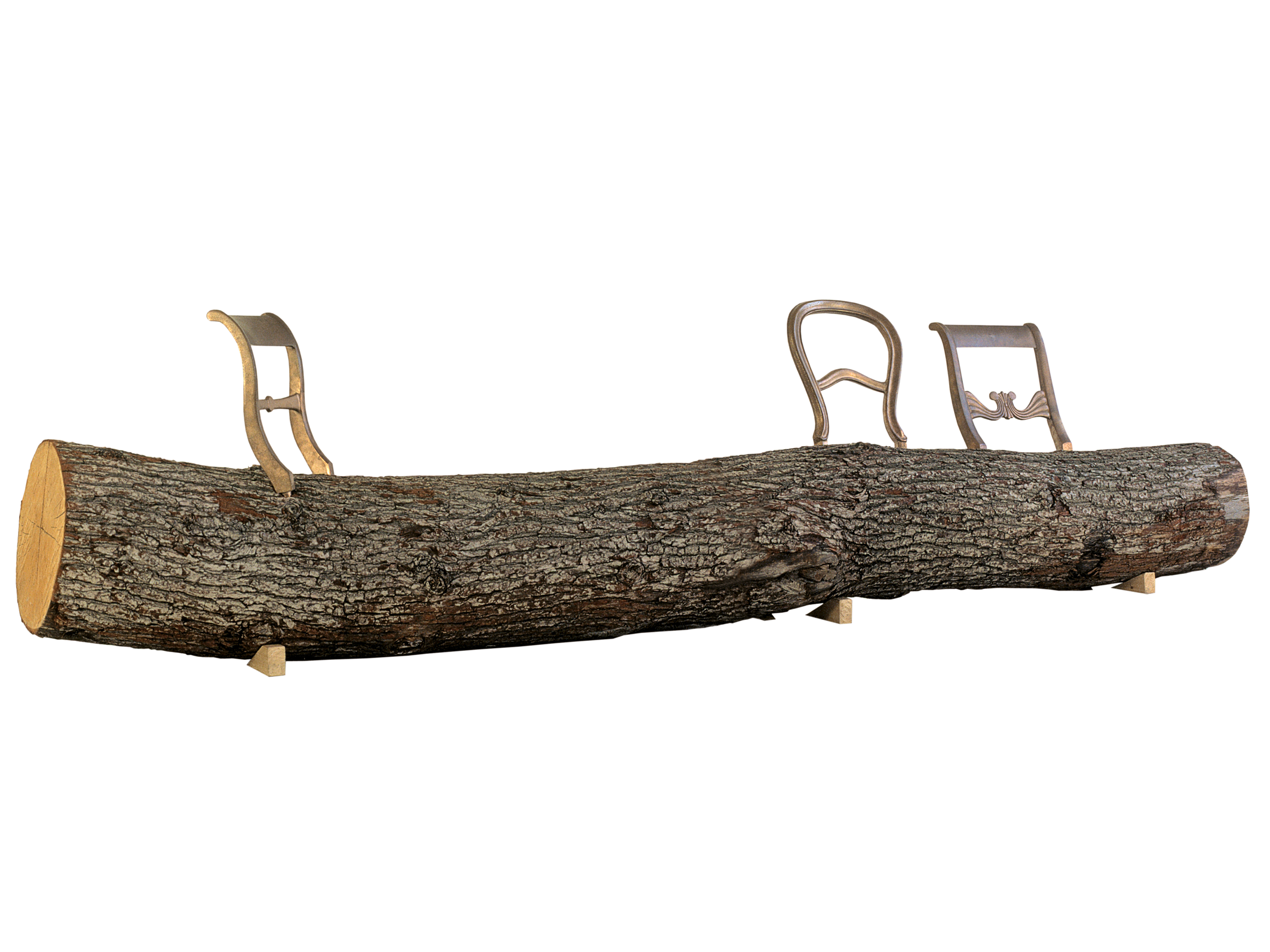 Droog design Tree trunk bench